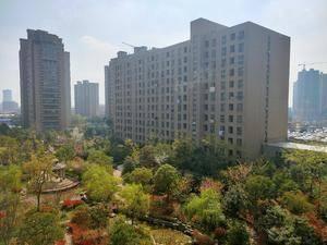 城置国际花园城
